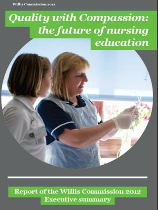 Theme 1:  The future nursing Workforce