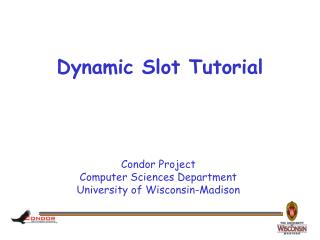 Dynamic Slot Tutorial