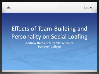 Effects of Team-Building and Personality on Social Loafing
