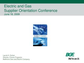 Electric and Gas Supplier Orientation Conference June 18, 2009