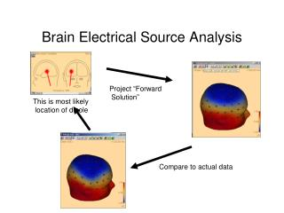 Brain Electrical Source Analysis