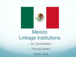 Mexico  Linkage Institutions