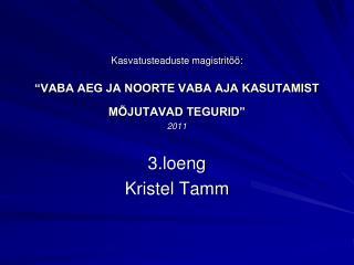 """Kasvatusteaduste magistritöö: """"VABA AEG JA NOORTE VABA AJA KASUTAMIST MÕJUTAVAD TEGURID"""" 2011"""