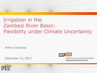 Irrigation in the  Zambezi River Basin: Flexibility under Climate Uncertainty