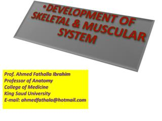 DEVELOPMENT OF SKELETAL & MUSCULAR SYSTEM