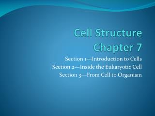 Cell Structure Chapter 7