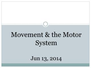 Movement & the Motor System Jun 13,  2014