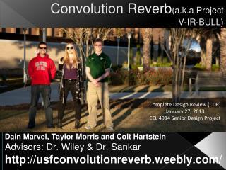 Convolution Reverb (a.k.a Project V-IR-BULL)