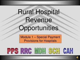 Rural Hospital Revenue Opportunities