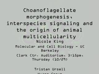 Choanoflagellate  morphogenesis, interspecies signaling and the origin of animal  multicellularity