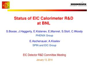 Status of EIC Calorimeter R&D  at BNL