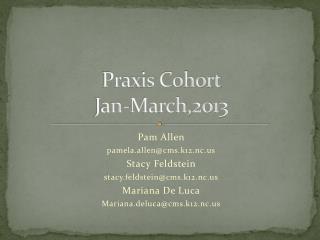 Praxis Cohort Jan-March,2013