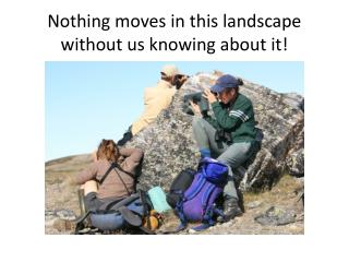 Nothing moves in this landscape without us knowing about it!