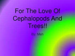 For The Love Of Cephalopods And Trees!!