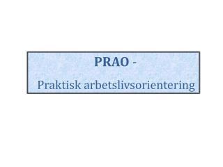 PRAO  -   Praktisk arbetslivsorientering