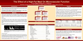 The Effect of a High-Fat Meal On Microvascular Function