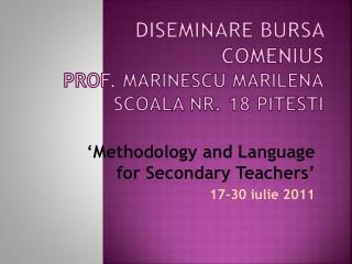 Diseminare  Bursa Comenius Prof.  Marinescu Marilena Scoala  Nr. 18 Pitesti