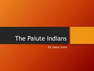 The Paiute Indians