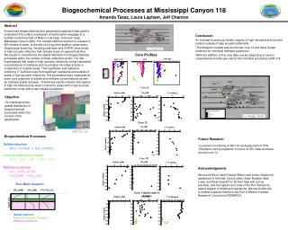 Biogeochemical Processes at Mississippi Canyon 118