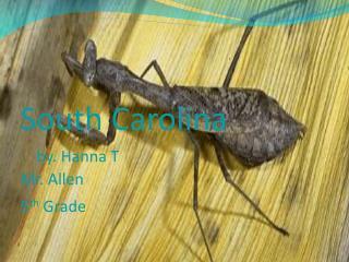 South Carolina                       by. Hanna  T Mr. Allen 5 th  Grade