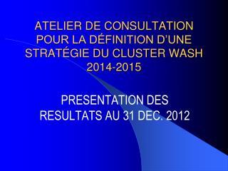 ATELIER DE CONSULTATION POUR LA DÉFINITION D'UNE STRATÉGIE DU CLUSTER WASH 2014-2015