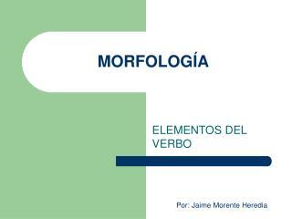 MORFOLOG A