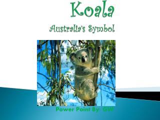 Koala Australia's Symbol