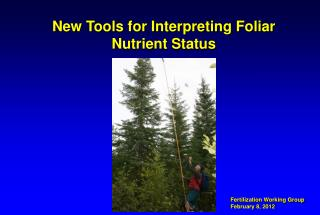 New Tools for Interpreting Foliar Nutrient Status