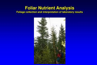 Foliar Nutrient Analysis Foliage collection and interpretation of laboratory results