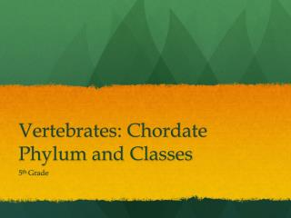 Vertebrates: Chordate Phylum and Classes