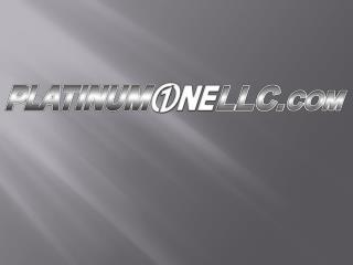 What  is the PlatinumOne program?