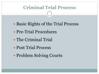 Criminal Trial Process
