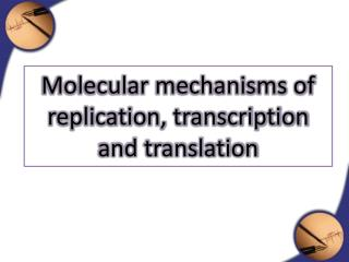 Molecular mechanisms of replication, transcription and translation