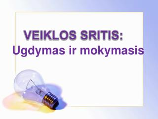 VEIKLOS SRITIS: