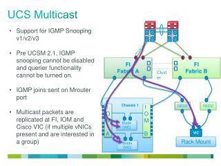 UCS Multicast