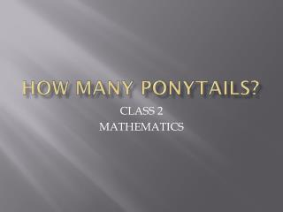 HOW MANY PONYTAILS?