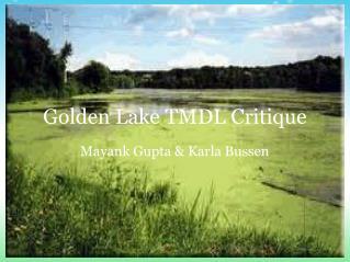 Golden Lake TMDL Critique