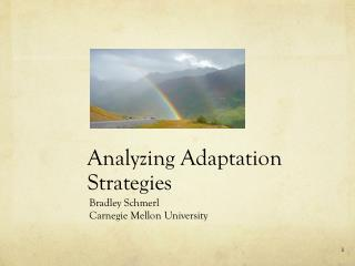 Analyzing Adaptation Strategies
