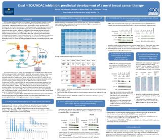 Dual mTOR/HDAC inhibition: preclinical development of a novel breast cancer therapy