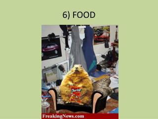6) FOOD