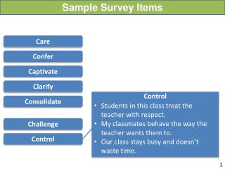 Sample Survey Items