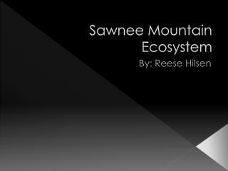 Sawnee  Mountain Ecosystem