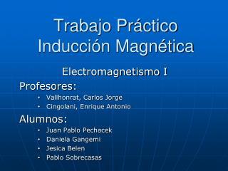 Trabajo Práctico Inducción Magnética