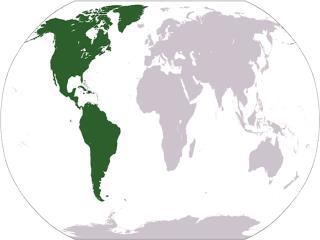 South America and the Incas