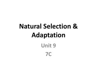 Natural Selection & Adaptation