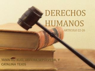 DERECHOS HUMANOS                                   ARTICULO 22-26