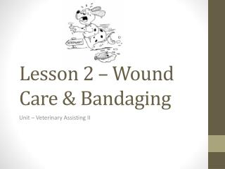 Lesson 2 – Wound Care & Bandaging