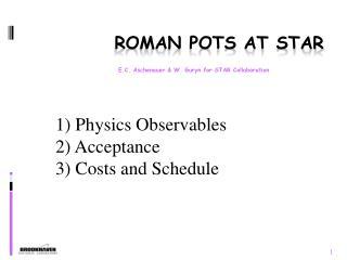 Roman Pots at STAR
