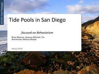 Tide Pools in San Diego focused on Behaviorism