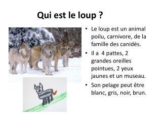 Qui est le loup ?